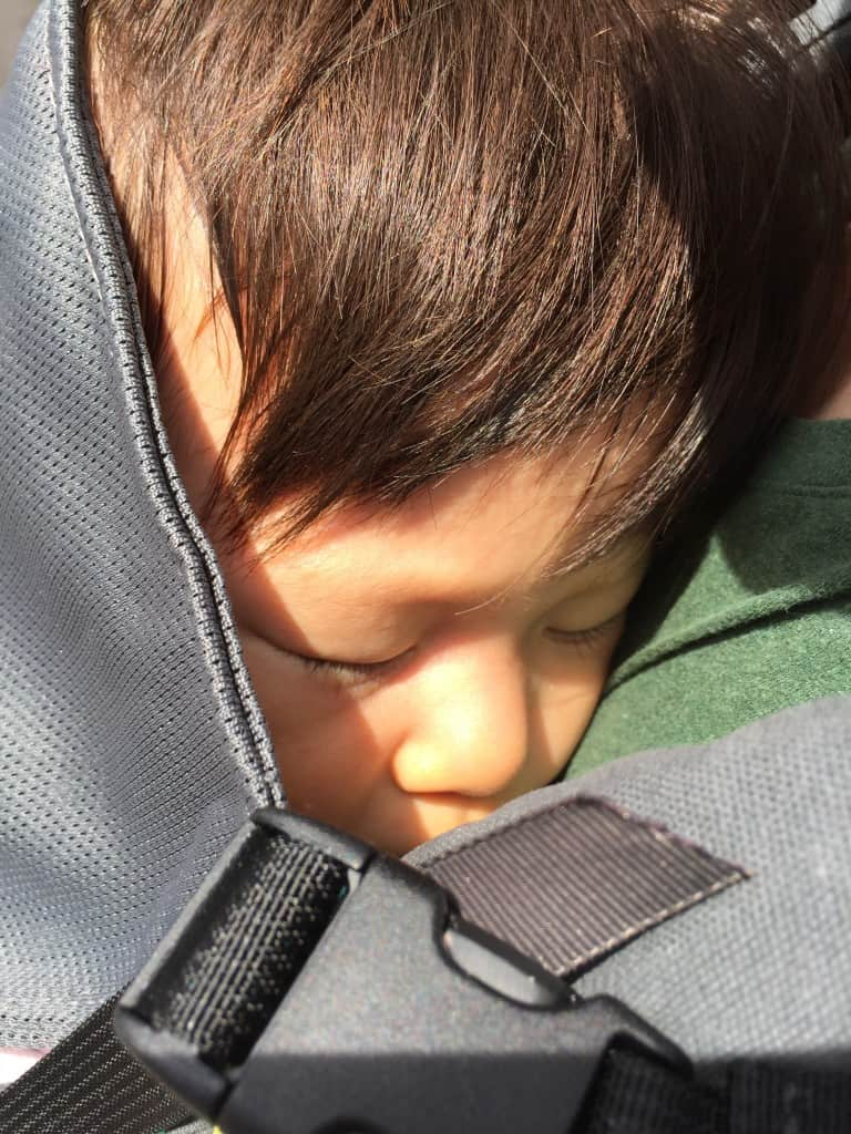 Max napping with the Kinderpack Koolnit hood up