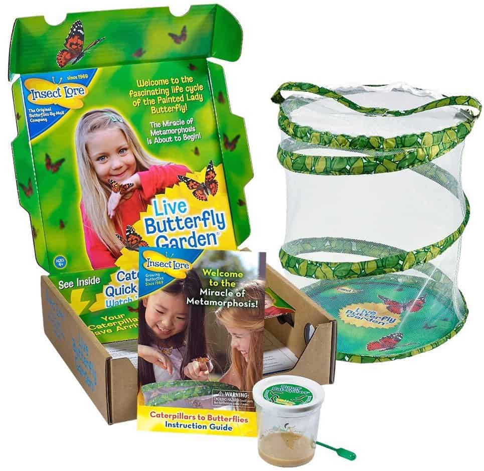 ultimate-gift-guide-best-birthday-and-holiday-gifts-and-toys-for-toddlers-2-3-years-old-butterfly-garden