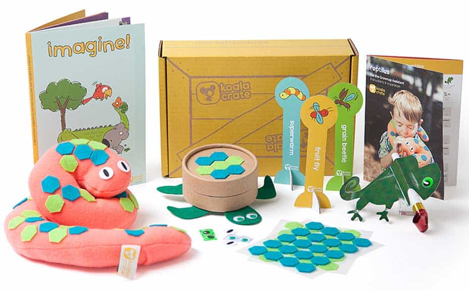 Kiwi Co Koala Crate This Is My All Time Favorite Subscription Box For Kids You Can Read One Of Reviews Here Love Doing The Projects And